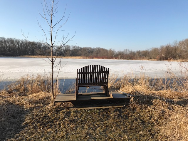 hermitage lake chair copy